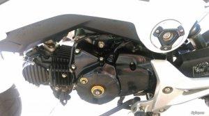 Honda MSX125 2015 zin 100% odo 7000km BS đẹp ngay chủ công chứng
