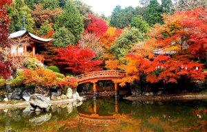 Khác biệt giữa văn hóa Mỹ và Nhật như thế nào ( P.2)