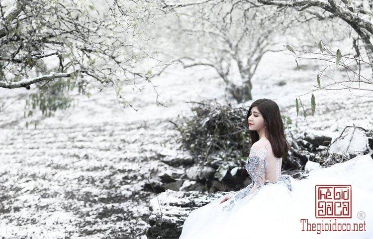 Tuyet-Trang (15).jpg