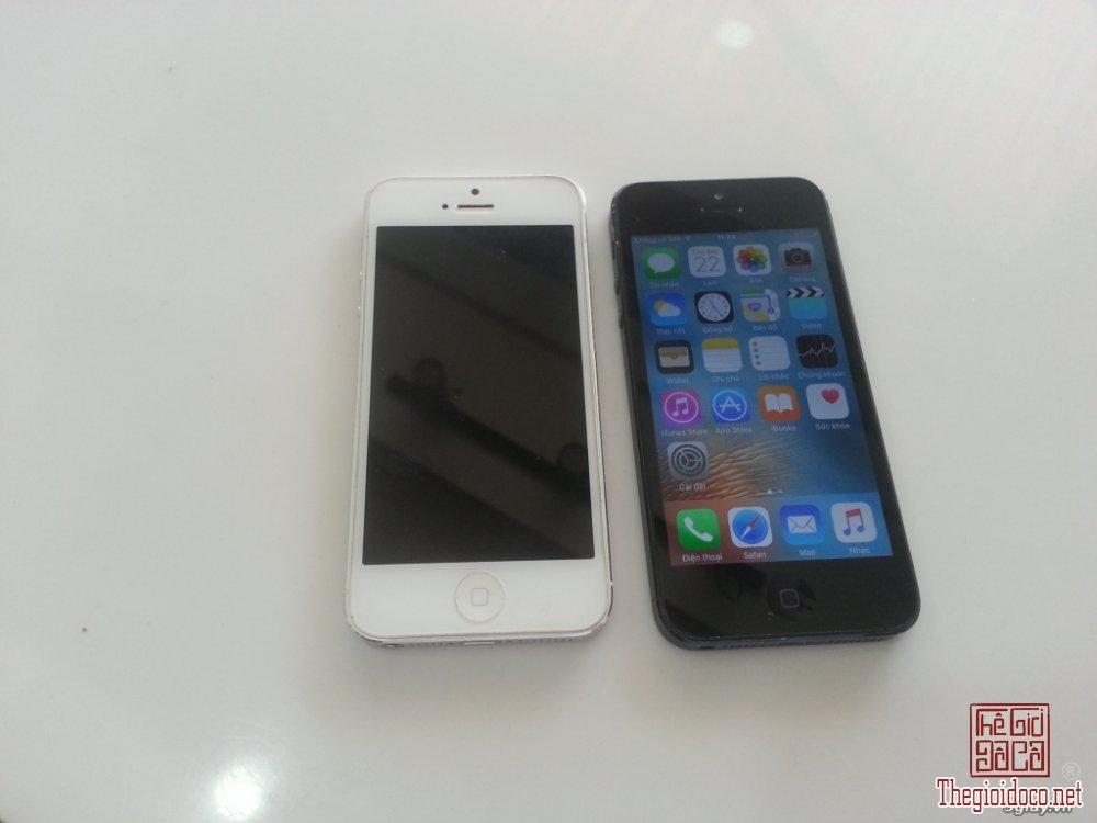 iphone 5 (3).jpg