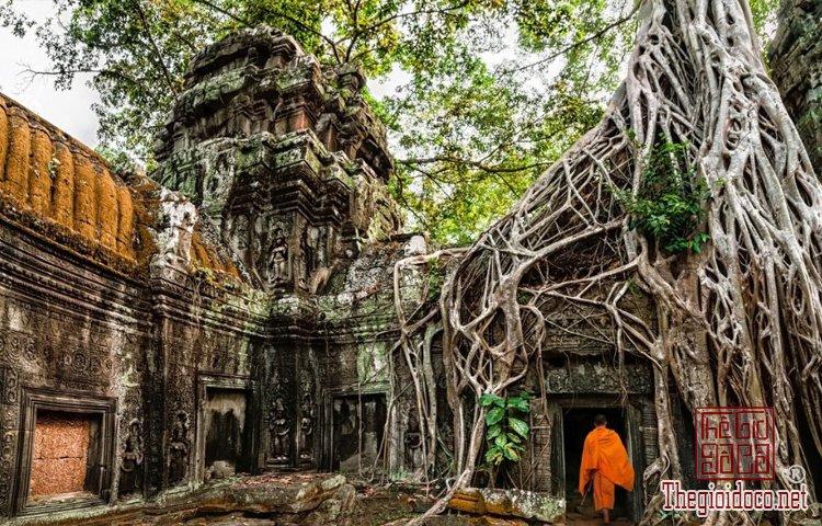 16 trải nghiệm ở châu Á đáng để bạn sớm xách ba lô lên đường (P (4).jpg
