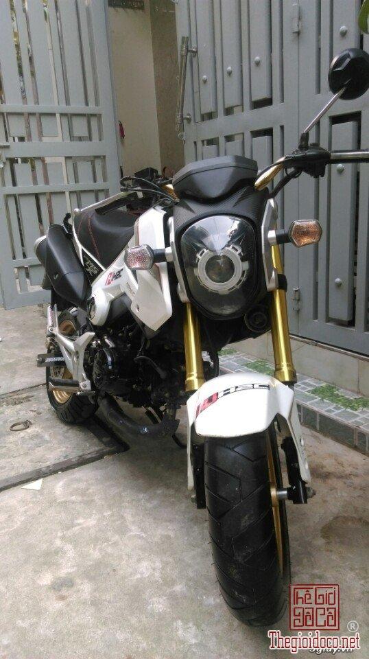 Honda-MSX125  (1).jpg