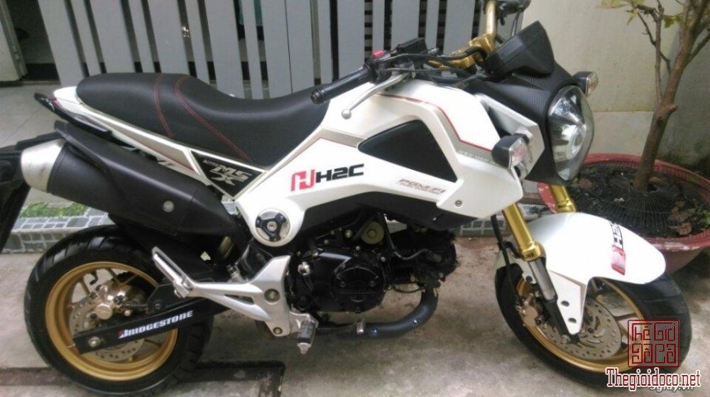 Honda-MSX125  (5).jpg