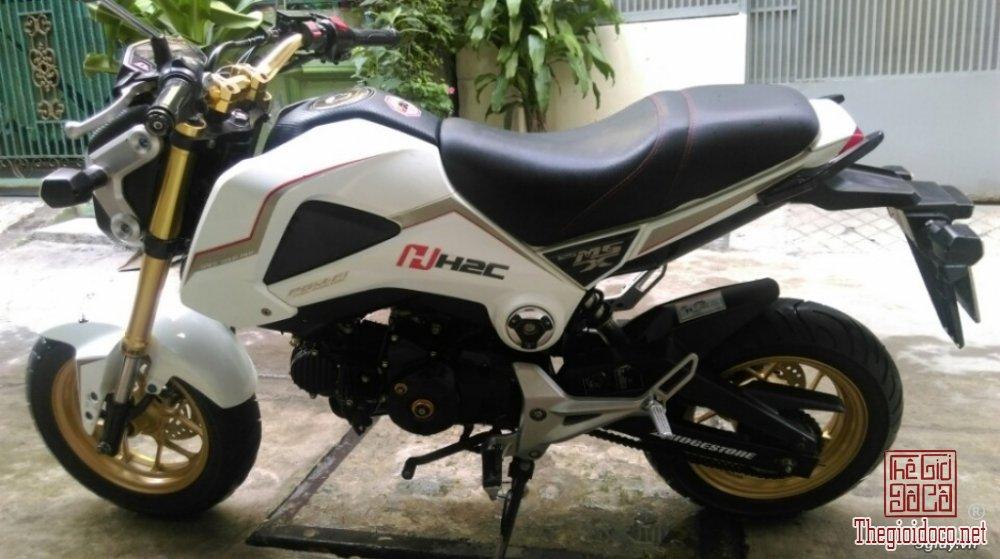 Honda-MSX125  (8).jpg