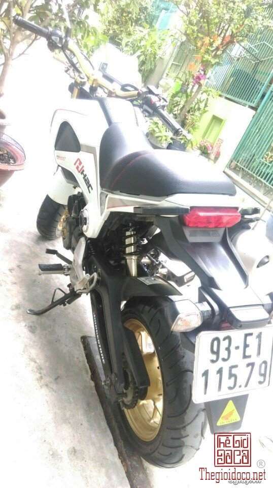 Honda-MSX125  (10).jpg