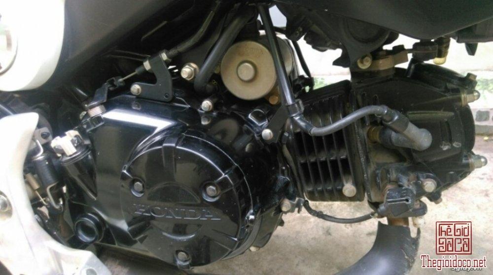 Honda-MSX125  (12).jpg