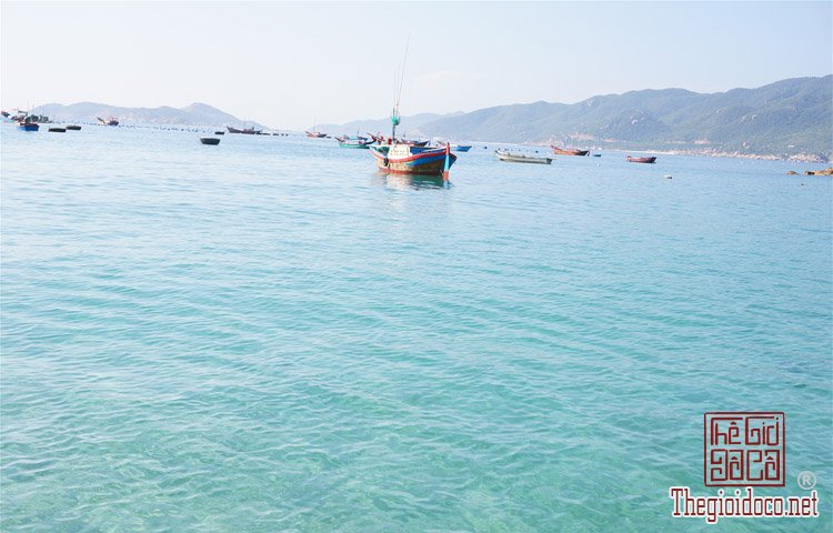 Dao-Binh-Hung (2).jpg