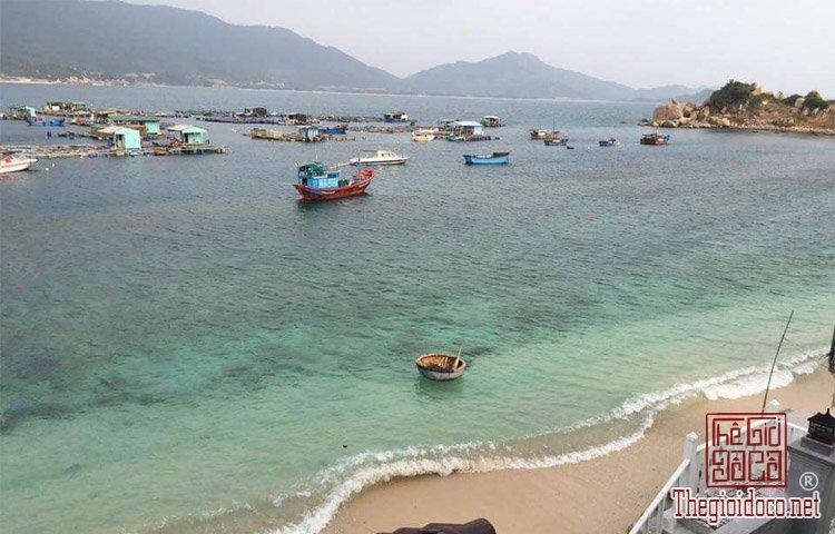 Dao-Binh-Hung (6).jpg