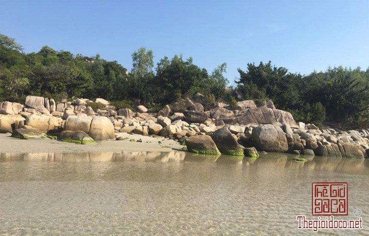 Dao-Binh-Hung (11).jpg