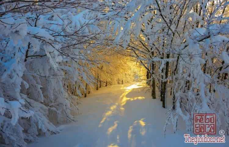 Những điểm đến phủ tuyết đẹp như cổ tích vào mùa đông (P (4).jpg
