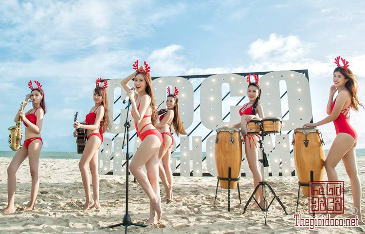 Coco-Beachcamp (13).jpg
