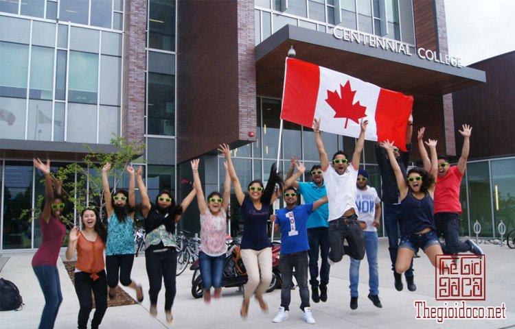Canada-du-hoc (1).jpg