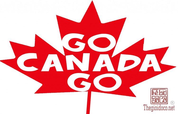 Canada-du-hoc (2).jpg
