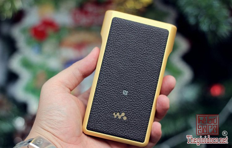 Sony-Walkman-NW-WM1Z (6).jpg