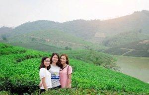 Cuối tuần về ốc đảo chè xanh mát xứ Nghệ