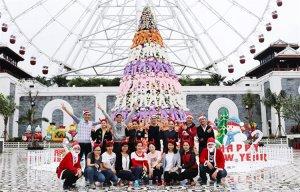 Cây thông Noel khổng lồ bằng gấu bông hút giới trẻ Đà Nẵng