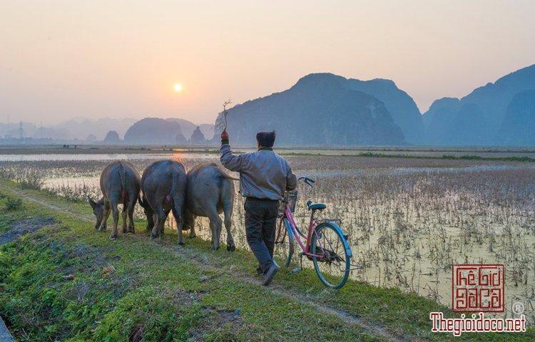 ẩm thực Việt Nam (1).jpg