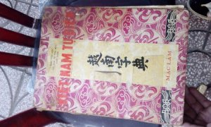 Việt nam từ điển
