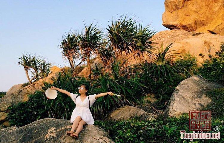 Du-Lịch-Phú-Yên (25).jpg