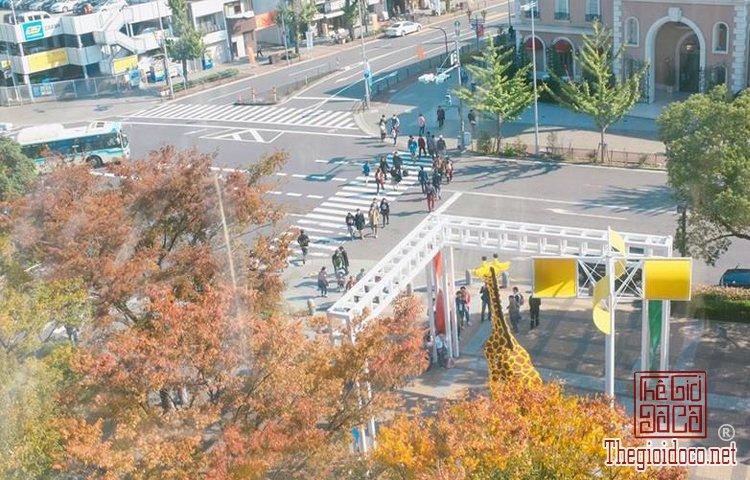 Du-lịch-Nhật-Bản (8).jpg