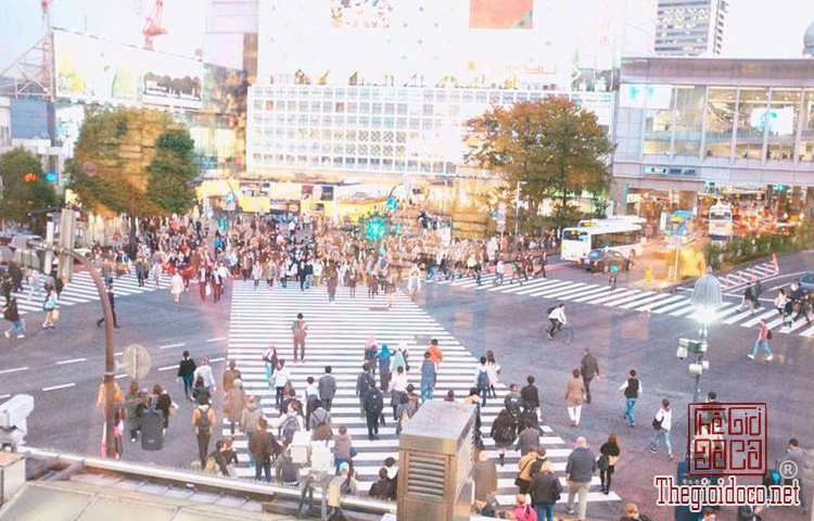 Du-lịch-Nhật-Bản (48).jpg
