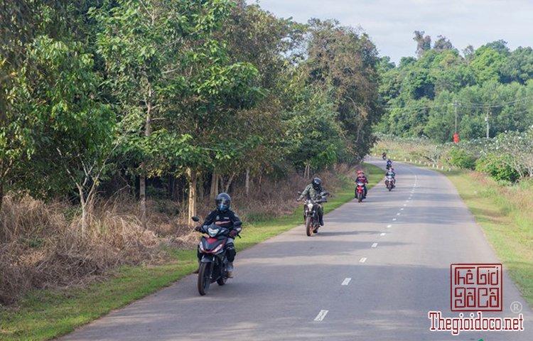 Jungle-biking (1).jpg