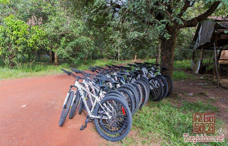 Jungle-biking (2).jpg