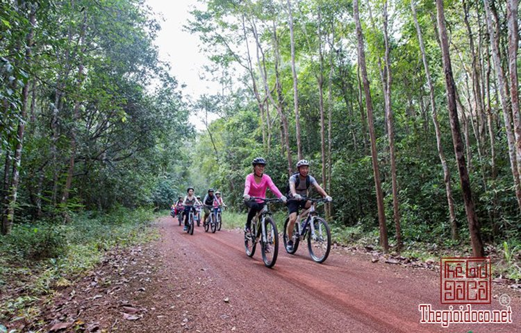 Jungle-biking (5).jpg