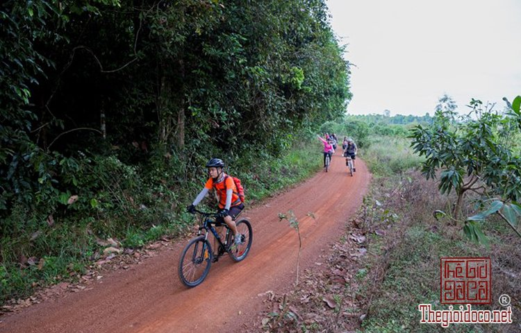 Jungle-biking (11).jpg