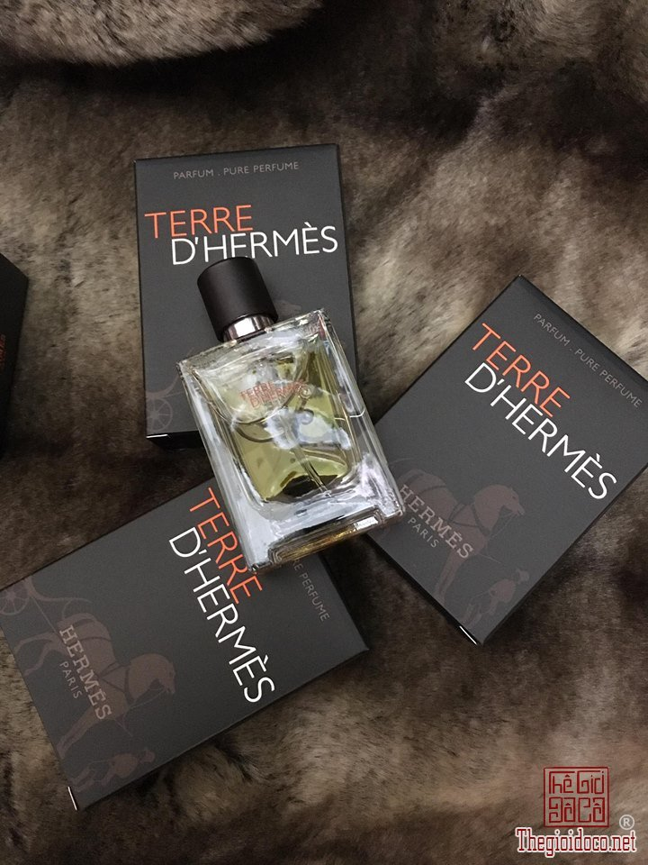 Hermes  (3).jpg