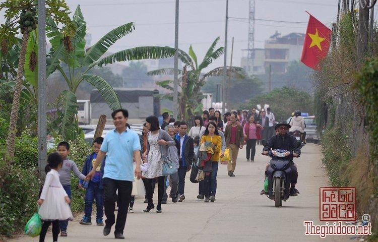 Vườn hoa đào làng Nhật Tân (4).jpg