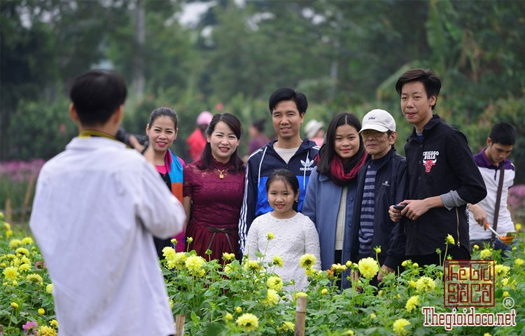 Vườn hoa đào làng Nhật Tân (5).jpg