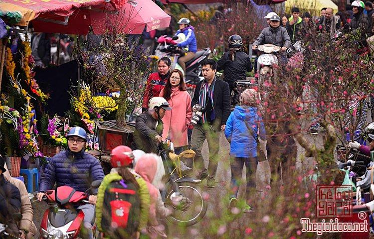 chợ hoa Tết (8).jpg