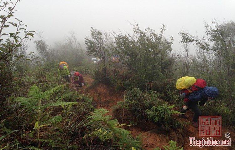 Chinh phục đỉnh Phú Lương (4).jpg
