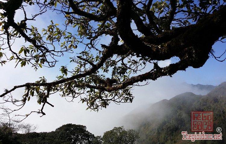 Chinh phục đỉnh Phú Lương (7).jpg