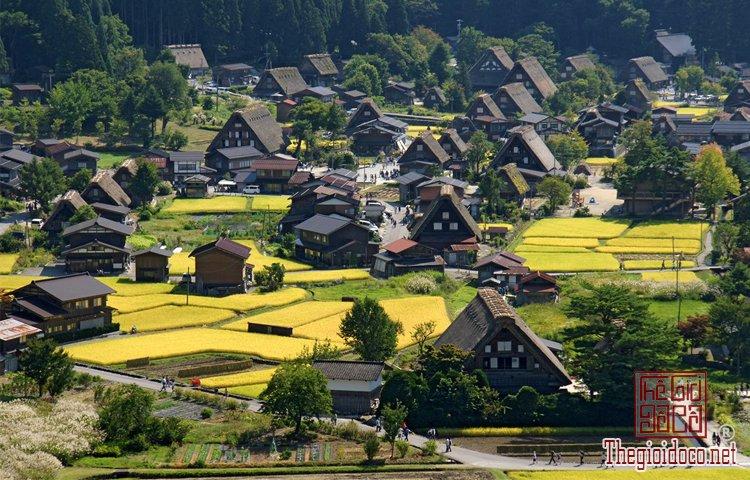 Làng cổ Shirakawa-go (1).jpg