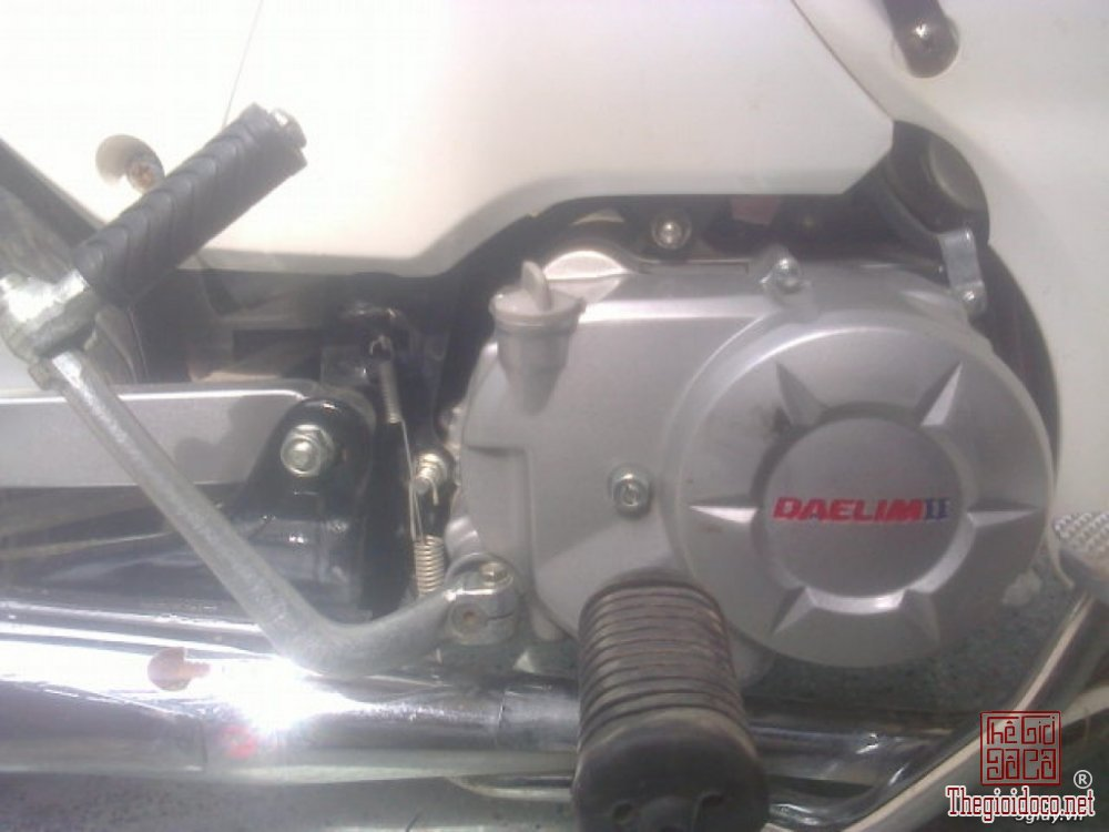 Cub Dalim 50cc (1).jpg