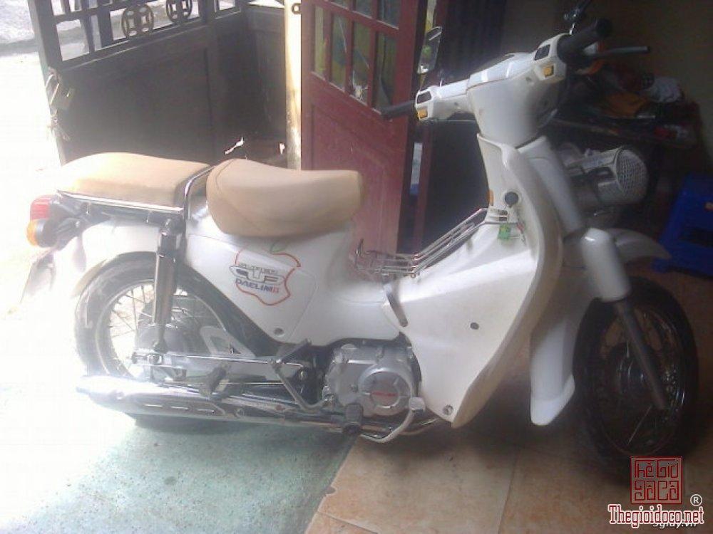 Cub Dalim 50cc (3).jpg