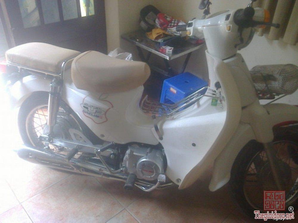 Cub Dalim 50cc (4).jpg