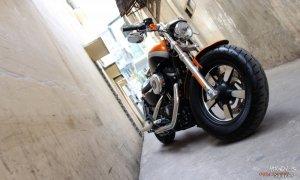 HARLEY DAVIDSON Sportster 1200 Custom ABS
