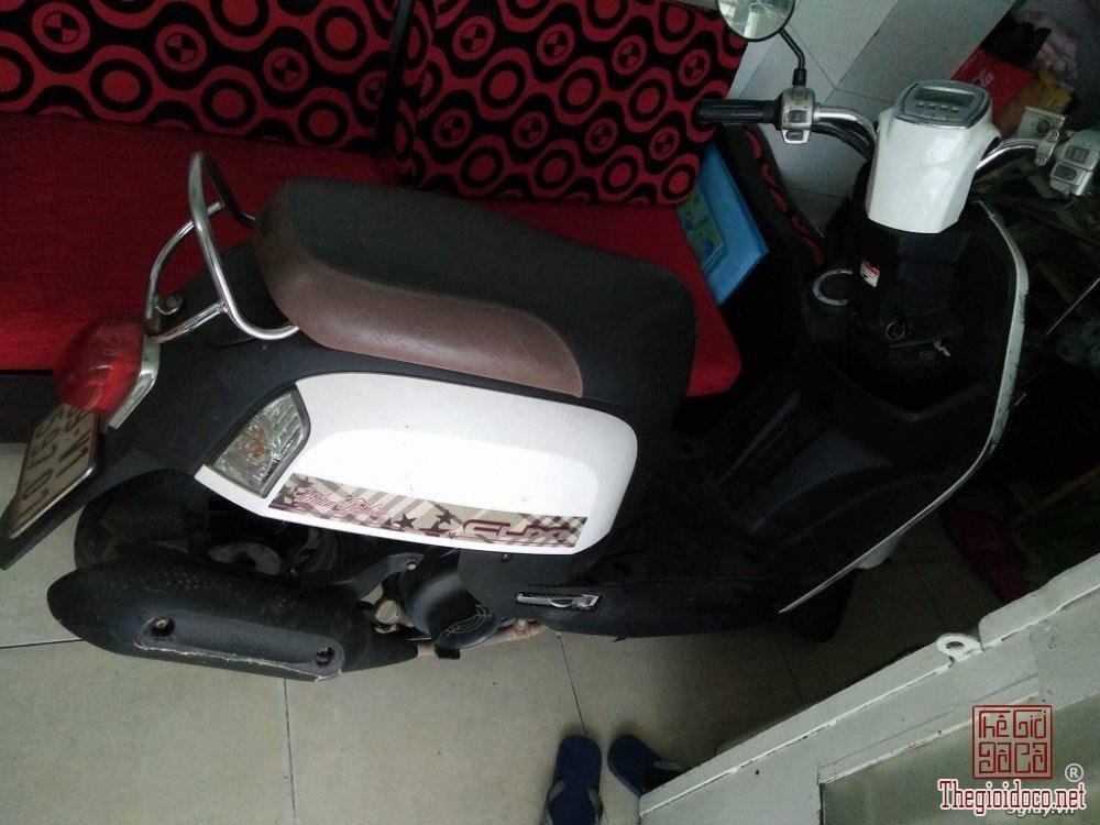 Cuxi Yamaha (2).jpeg