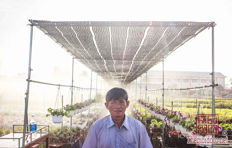 Làng hoa Tân Quy Đông (5).jpg