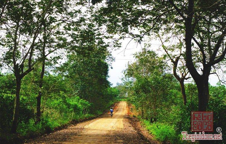 Cung đường xuyên Việt (6).jpg