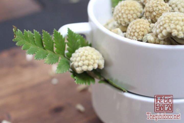 Các loại trà hoa thanh mát tốt cho sức khỏe dịp Tết (13).jpg