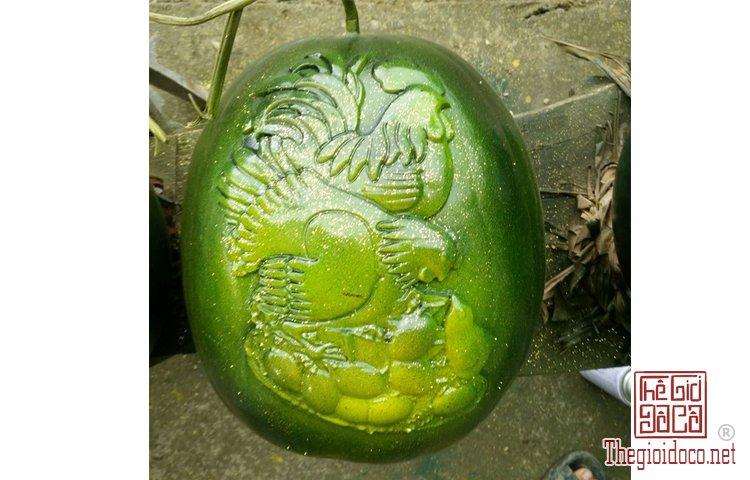 Những loại trái cây độc lạ (1).jpg