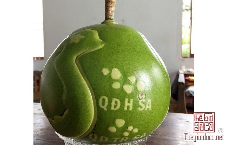 Những loại trái cây độc lạ (3).jpg