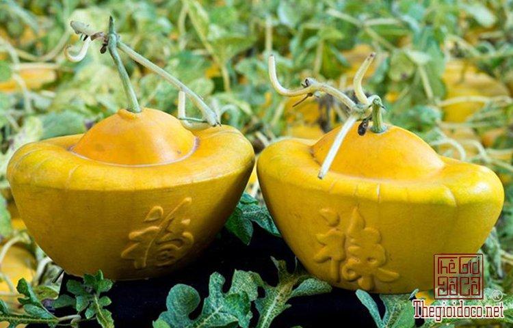 Những loại trái cây độc lạ (8).jpg
