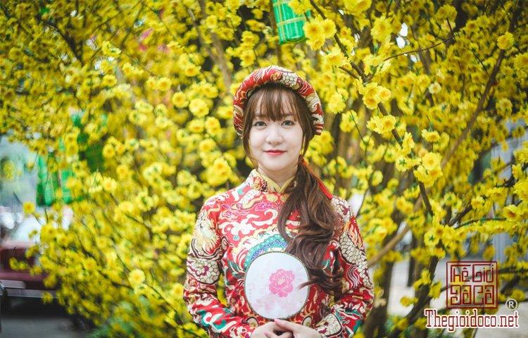 Mùa xuân nổi bật giữa Sài Gòn (2).jpg