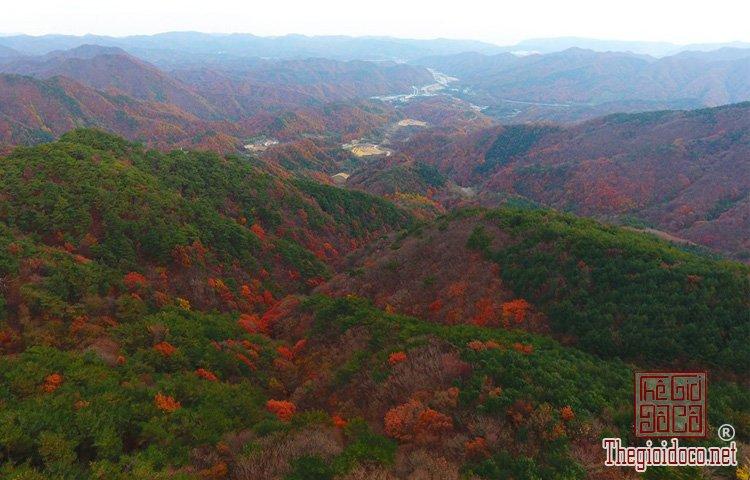 Seoul (7).jpg