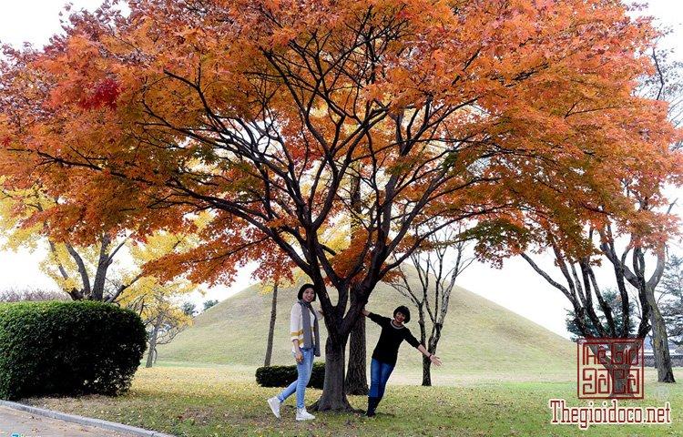 Seoul (12).jpg
